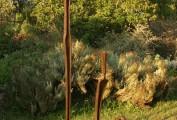 """""""L'attesa"""". Collezione privata (cm180x80 )"""